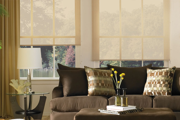 Designer Roller Screen Shades